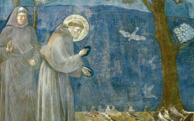 I beni ecclesiastici nella scommessa globale dell'economia di Francesco